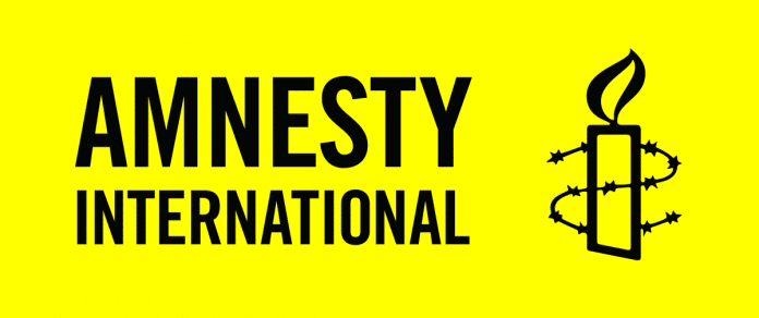 Amnesty International, 10 Women, Still Missing, Zabarmari Killings