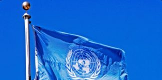UN, 110 Borno Farmers, Killed in Zabarmari
