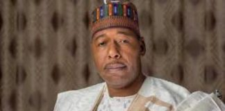 Babagana Umara Zulum, Disagrees,B'Haram, Still Strong, Borno State