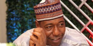 Babagana Umara Zulum, Gunmen, Attack Borno, Adamawa Villages