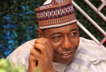 Borno Governor, Babagana Umara Zulum, Reveals, Boko Haram, Christians, White Men