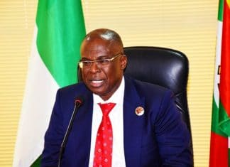 Timipre Sylva, Legalise, 'Illegal' Petrol, Sales, Nigeria, Niger Republic