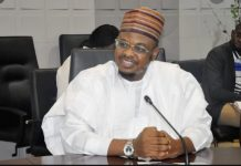 Isa Ali Ibrahim Pantami, PANTAMI, DSS, Senate, Not Up to Task